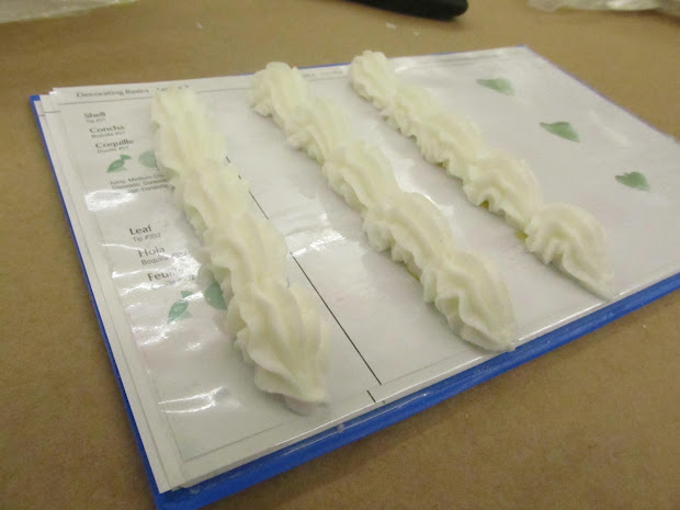 Wilton Course One Cake Decorating Practice Sheets