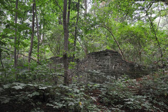 Trojanowice koło Żarnowa. Park z I połowy XIX wieku - zachowane fragmenty ścian dawnych zabudowań (dworu lub oficyny)
