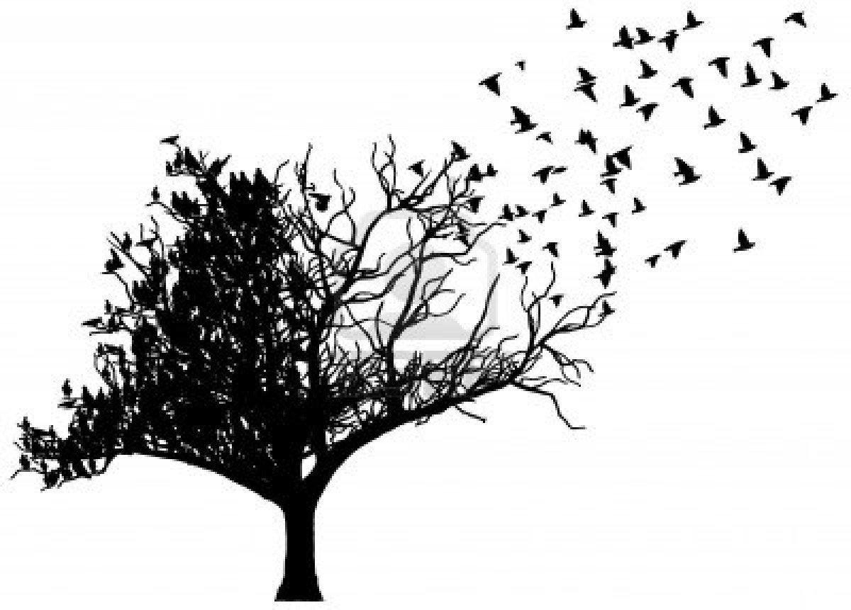 Ağaçlara dokunanlar daha sağlıklı oluyor