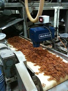 MoistTech pretzel moisture