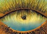 Este Olho Tudo Ve Viu