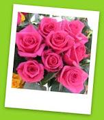 """Premio """"Rosas de San Valentín"""""""