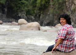 BERTA VIVE