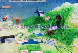 detalle de la maqueta medio ambiente