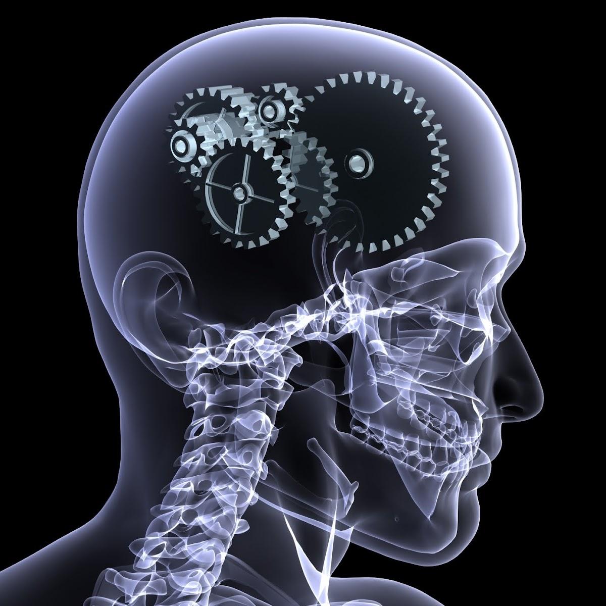 Как стимулировать работу мозга, Активизировать работу мозга