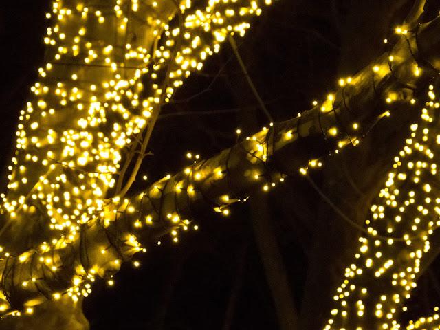 встретить новый год 2016 севастополь