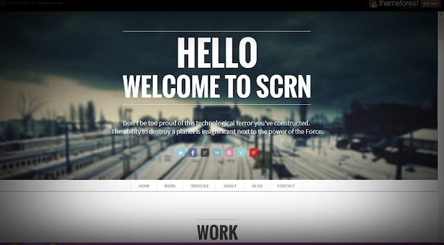 most popular wp themes of 2013