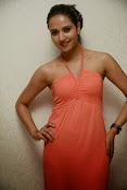 Sunita Rana latest Glamorous Photos-thumbnail-8