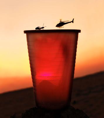 un vaso de cerveza, una hormiga y un helicóptero