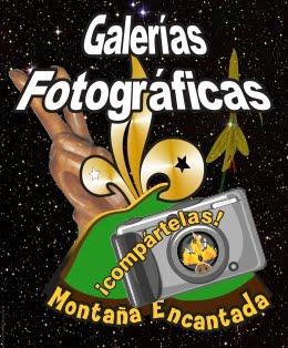 Galerías Fotográficas