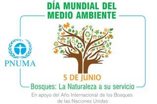 Calendario civico escolar d a mundial del medio ambiente for Actividades que se realizan en una oficina wikipedia