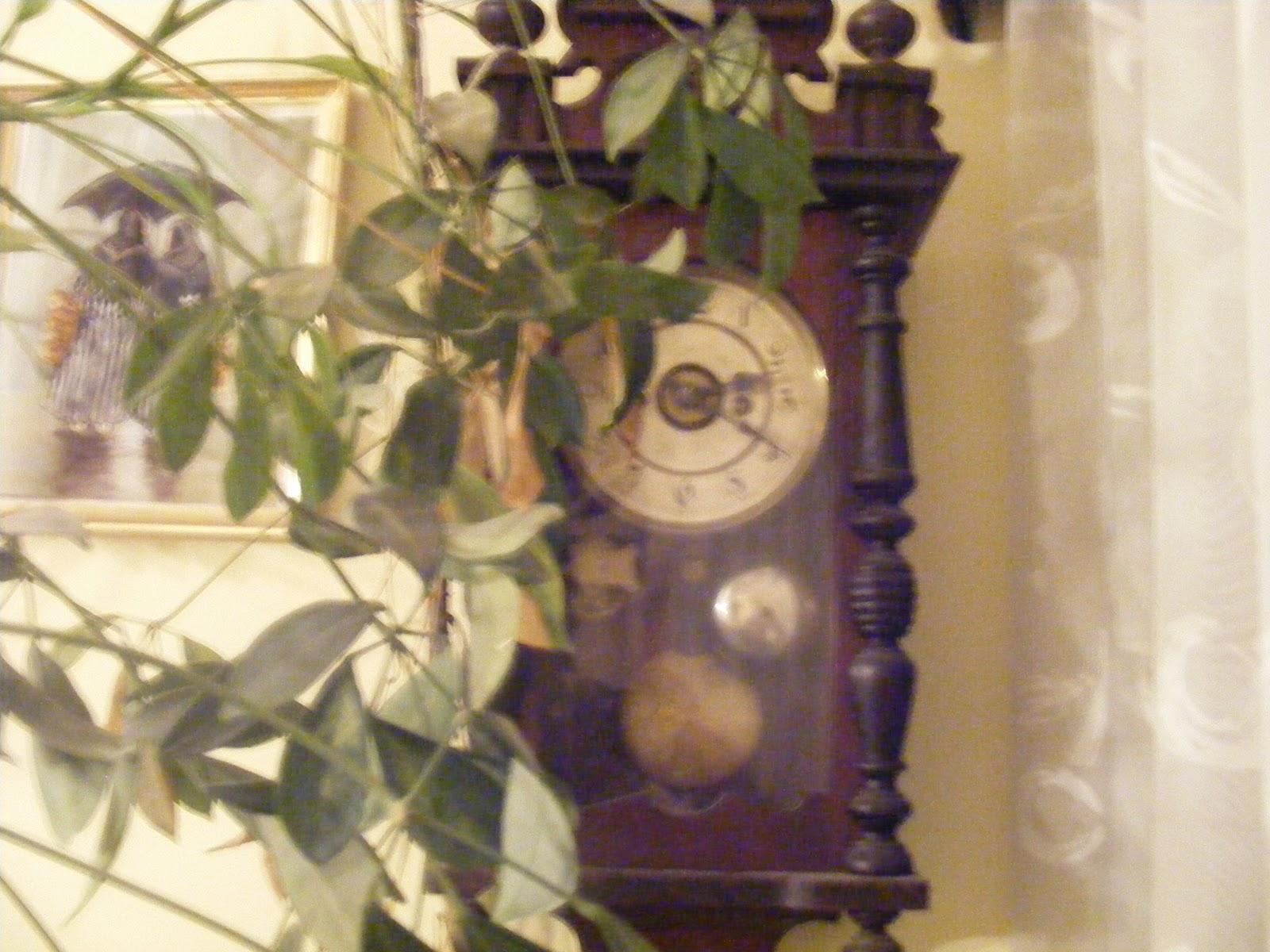 Relojes mujer antiguos