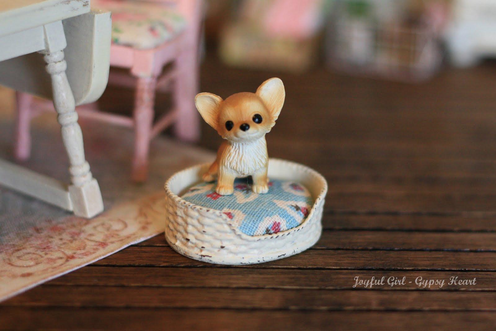 a mini pet