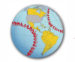 picture of globe with red baseball stitches added