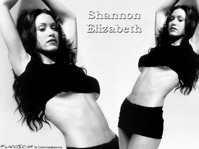 Shannon Elizabeth Image