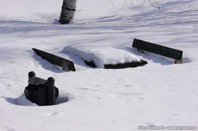 rastplats, snö, vinter, översnöad, översnöat, bord, bänk, papperskorg