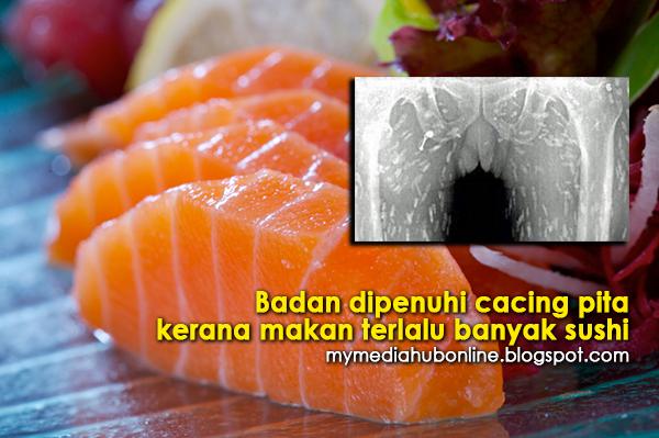 Bahaya Makan Sushi Terlalu Banyak Badan Dipenuhi Cacing Pita