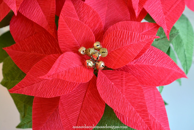 Paper Poinsettia Flower Pattern Romeondinez