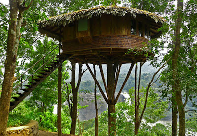 They are sambar deer spotted deer and lawn deers are the amazing attractions of this deer park. And also there are tree top huts in the park. & Are you ready to enjoy the days at Thenmala ???   Triptokerala