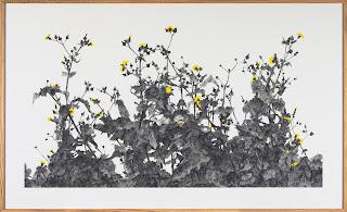 Richard Müller: Plantes poussant devant l'atelier 7
