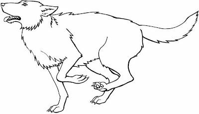 Ilustración del lobo para colorear o pintar