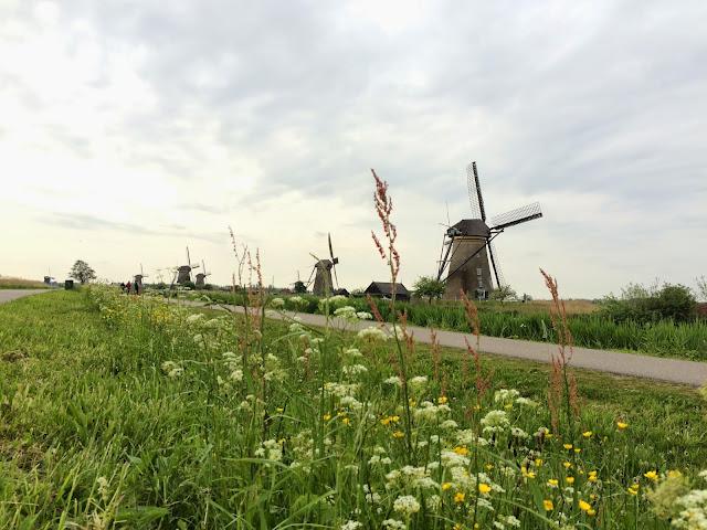 Киндердайк в Нидерландах