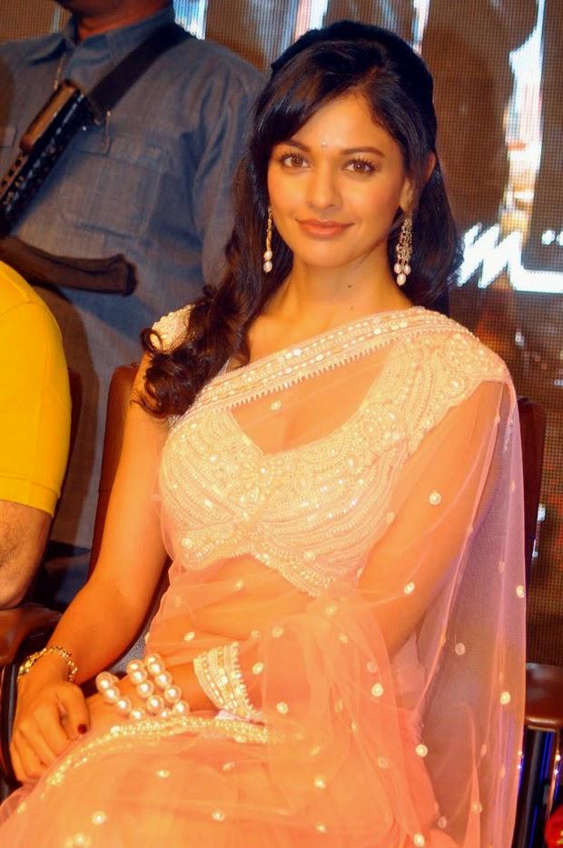 Pooja Kumar Actress In Saree cute