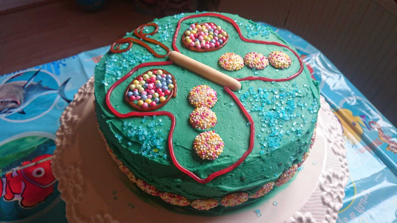 Chocolate Cake And Turquoise Have A Butterfly I Think It Was Bit More Green Than Blue To Be But Other That Did Alright
