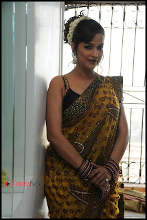 Tanisha Singh Latest  Pictureshoot Gallery in Saree  0005
