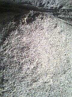 Tepung Cangkang kerang