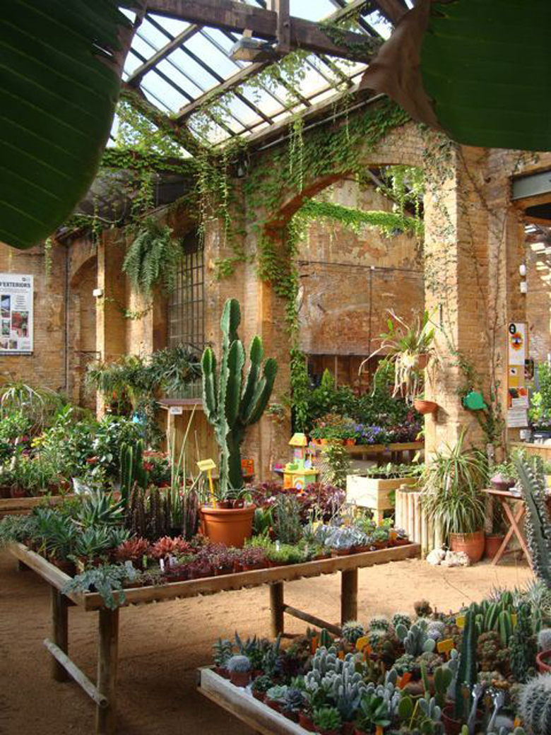 Paradis express hivernacle barcelona for Idea center dilshad garden
