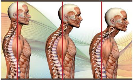 Casa Pilates: Alineamiento de la Columna vertebral