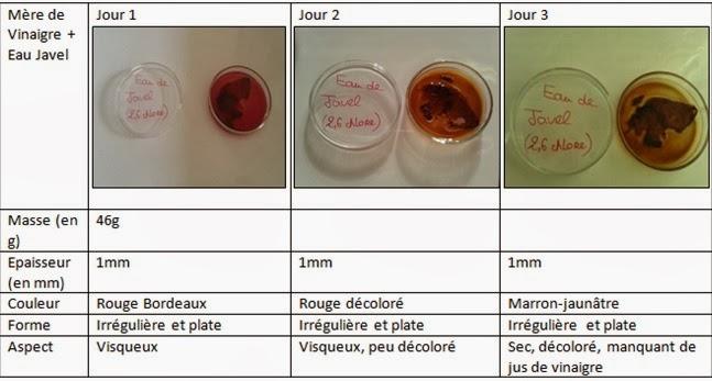 Tpe biofilms bact riens test de la corrosit et r sultats for Vinaigre eau de javel