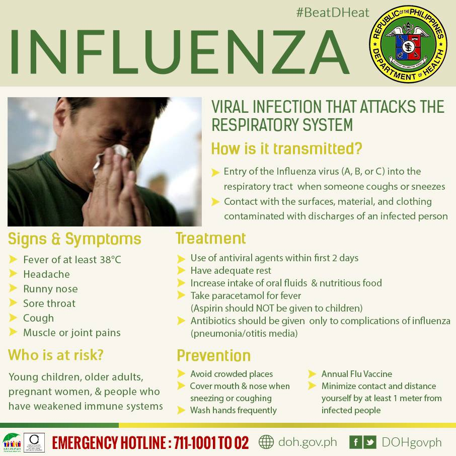 viral infection influenza or flu essay Essay vaccine and influenza illness grant wade april 22, 2001 influenza influenza influenza, also known as the flu, is a virus that infects the respiratory tract.