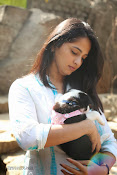 Anushka with Puppy at Blue Cross Pet Carnival Press meet-thumbnail-18