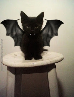 Jom Tengok Pets Dengan Halloween Costumens
