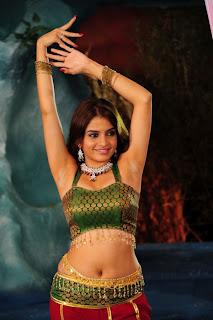 Sheena Shahabadi Spicy Hot Navel Photos