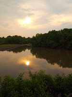 Sunset - Sungei Buloh Welnad Reserve