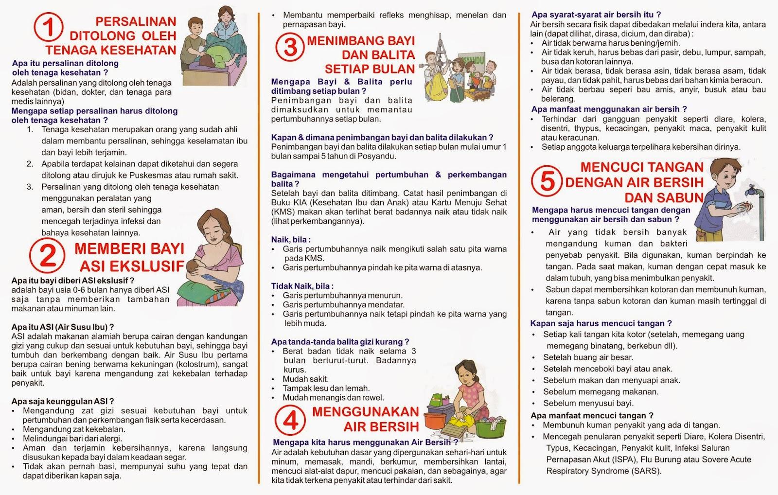 Liflet Phbs Pnpm Gsc Desa Tanjungjaya
