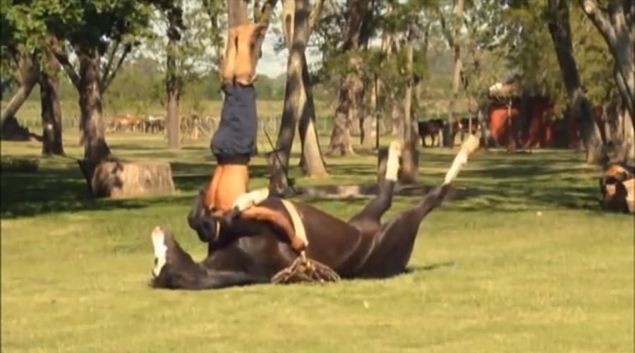 Doma de un caballo por un indio de la Pampa
