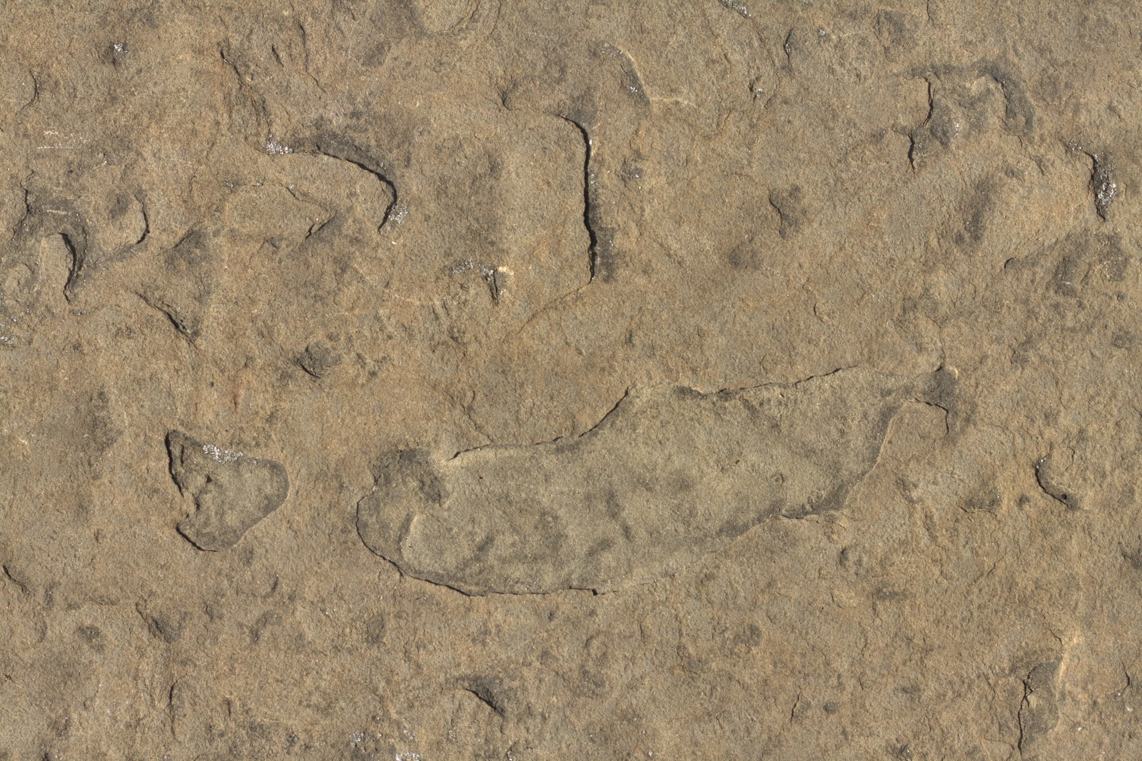 (Stone 7) rock cave mountain brown texture 4770x3178
