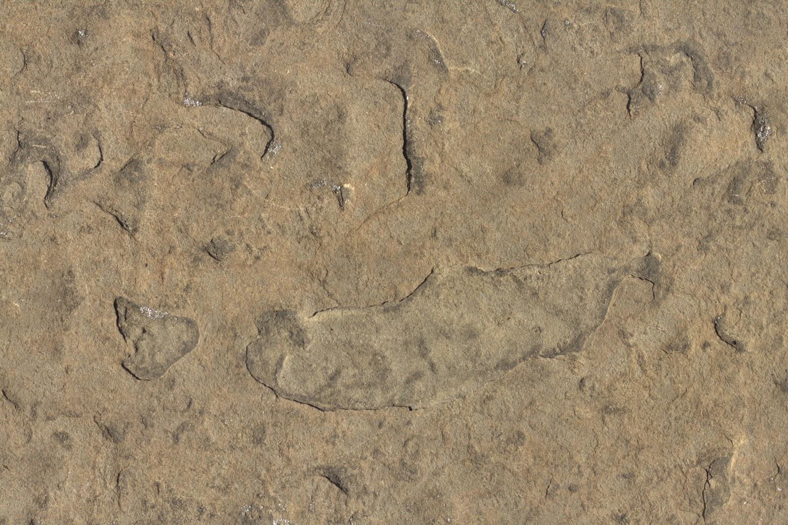 Stone rock texture