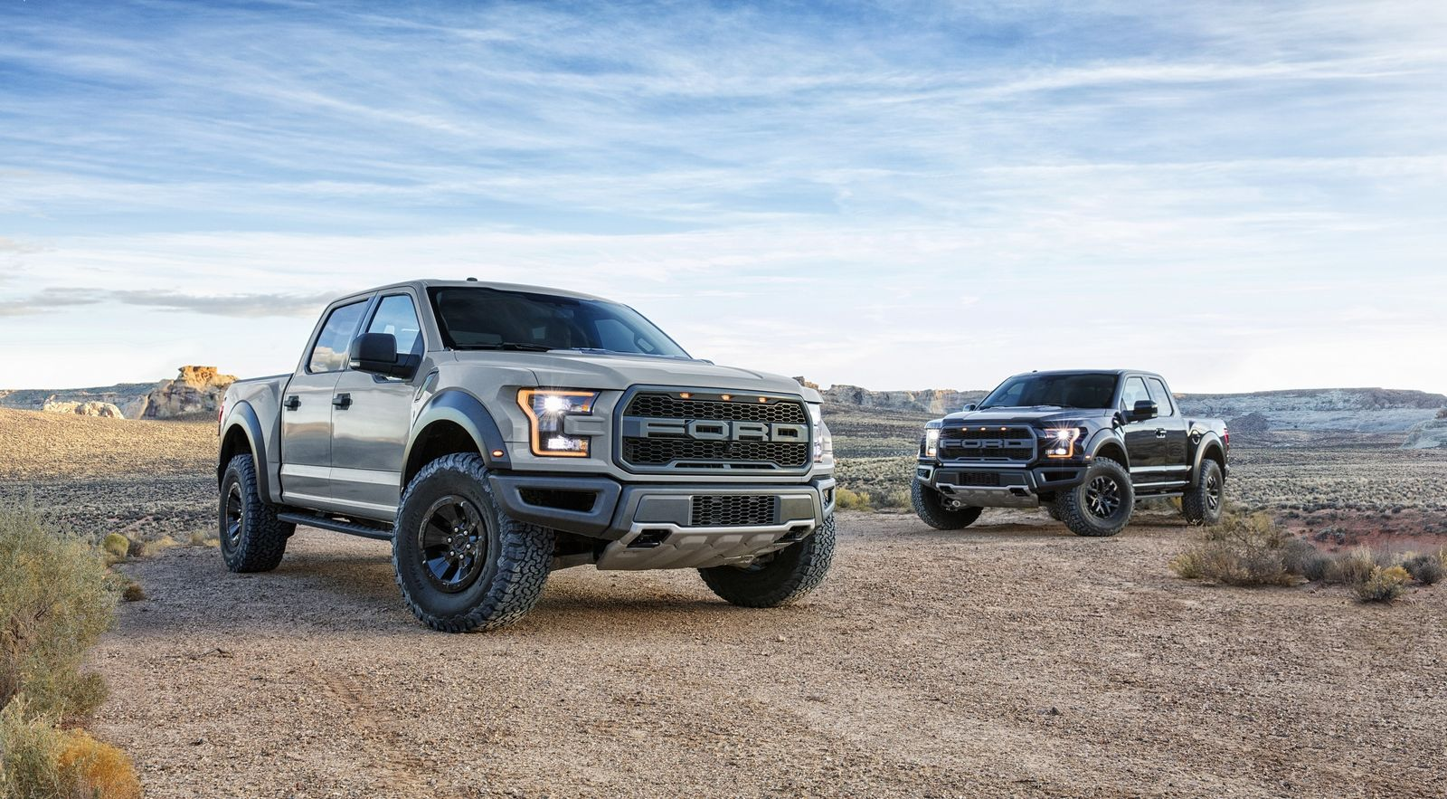2017 ford raptor supercrew