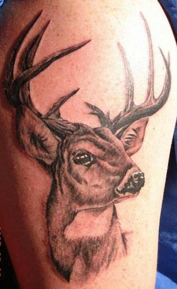 Deer Skull Tattoos