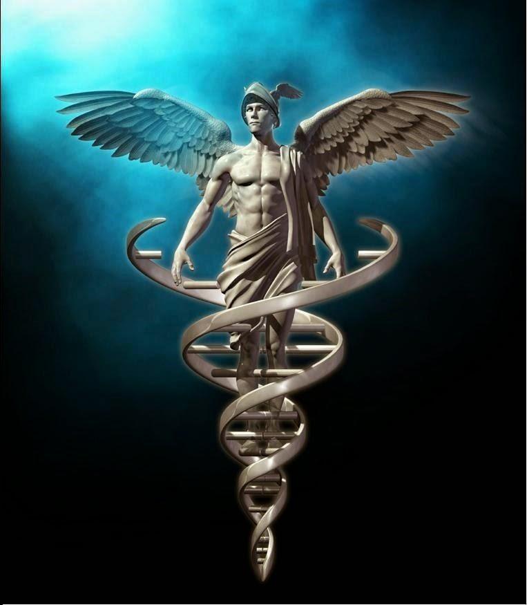 ADN Ángel