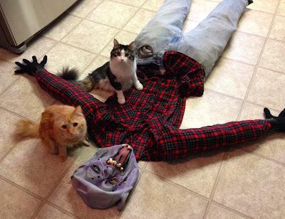 Anakin The Two Legged Cat & Mika Halloween 2013