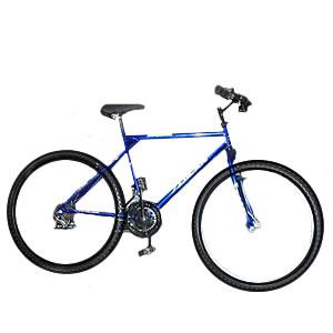 http://2.bp.blogspot.com/-lFiiTTm16nI/TXUJmwkHhCI/AAAAAAAAAAM/uRWhlmMb5Z0/s760/bicicleta.jpg