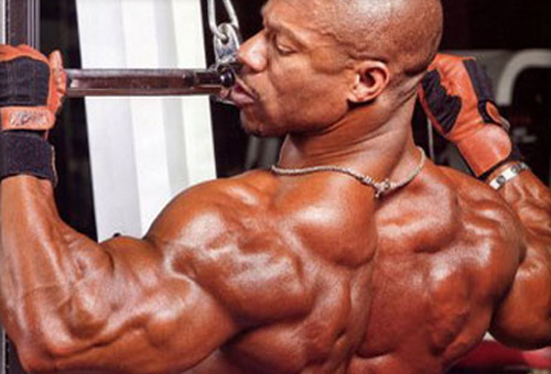 cicli steroidi massa