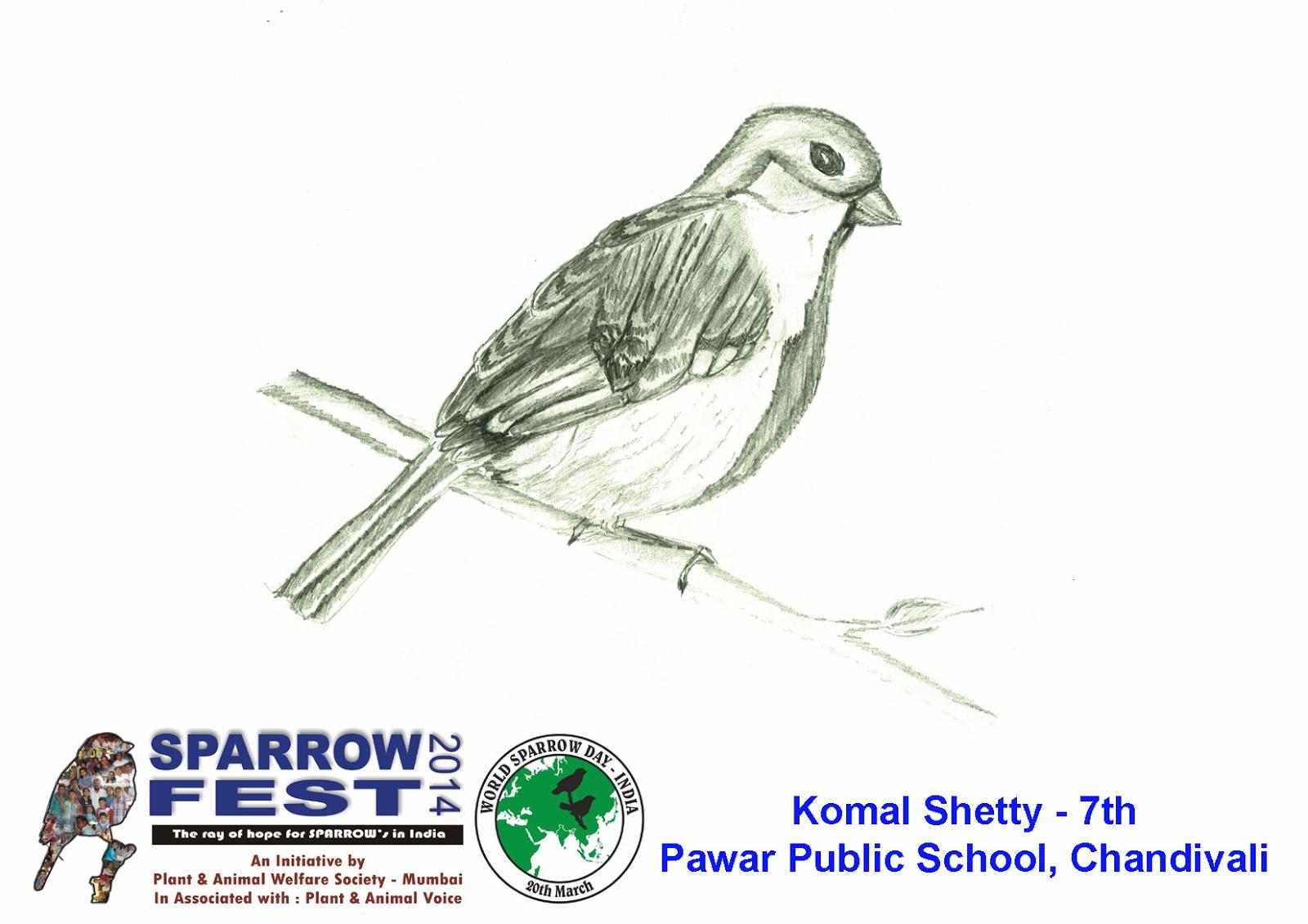 World Sparrow Day - India: PAWS-Mumbai selected Sparrow ...
