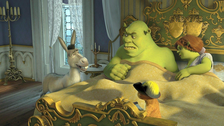 el toque kitsch de la pel  237 cula lo tuvo el tema    Funkytown    Shrek 3 Fiona